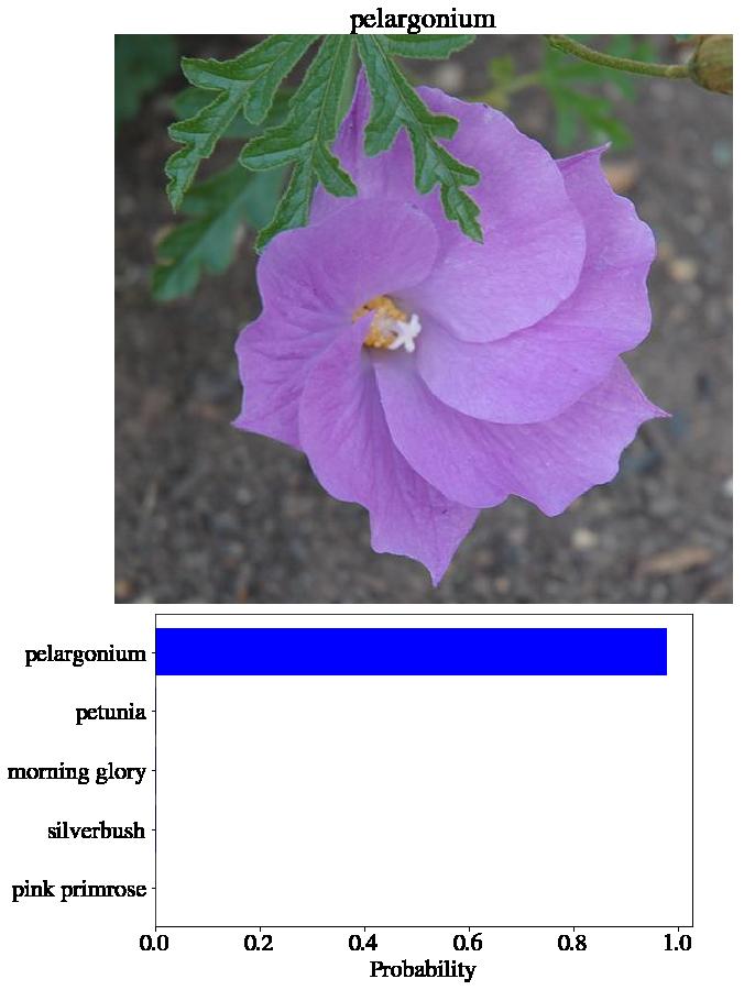 PyTorchによる画像分類(vgg16編)   英語の勉強サイト